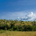 Rinca ist ca. 196m²  groß und vulkanischen Ursprungs