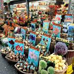 Tulpenmarkt