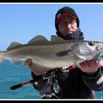 Premier poisson de l'année au Sayorie Shad