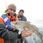 Pêche du cabillaud en baie de Douarnenez