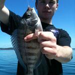 Tenya Fishing rade de Brest