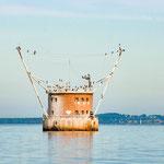 Foto: NABU Insel Usedom / Jana Freitag