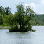 Kölpinsee (foto ak)