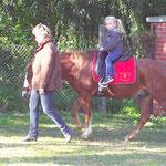 Pony führen auf Hof Kruse