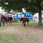 die Ponys waren echt cool von der Reitschule Immenhof Milas in Luko mit grosser nachfrage