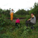 Sonja und Gerhard entfernen den Grünschnitt, während Alfred eine Pause macht.