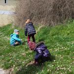 Die Kinder suchen fleißig ihre Osternester.