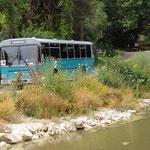 Hier der Youngtimer Autobus der Naturpark-Flotte.