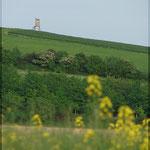 Entdecken sie die vielen Ebenen der Weinviertler Hügellandschaft.