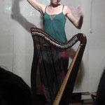 Suoniamo insieme, conosciamo gli strumenti - l'arpa celtica