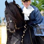Alex und Caruso in Schlosshof - auch heuer am 1.5.2014 wieder zahlreiche Friesen dort am barocken Rundgang zu bewundern