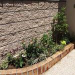 夏花壇に植え替え