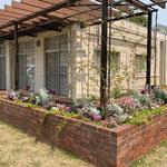 季節のお花とグリーンのミックス花壇