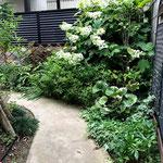 庭の奥、コーナー植栽と真砂土のアプローチ