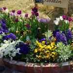 季節のお花いっぱいウエルカム花壇