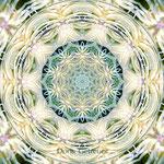 31 Doris Getreuer Mandala