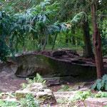 Drachenstein, keltischer Kultplatz
