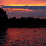 Abendlicht auf der Elbe bei Magdeburg, Canon EOS 500D, Yashinon DS-M 1:2,8/35 mm