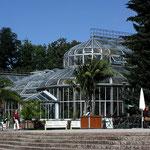 Gewächshaus im Berliner Botanischen Garten, Canon EOS 500D, Yashinon 1:2,8/35 mm