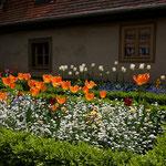 Garten in Weimar, Canon EOS 300D, Tokina 1:4/12-24 mm