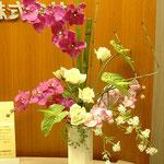 オフィス向けレンタル作品05
