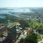 Ausblick vom Tower in Richtung Meerresöffnung.