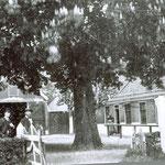 Doorrijstal bij de herberg van Greeuw. We zien weer de zelfde kastanjeboom op het Kerkplein, nu kijken we in zuidelijke richting.