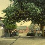 Kerkplein, richting Noordeinde, kort na 1900. De kastanjeboom stond er tot ongeveer 1926.