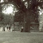 Het Kerkplein, omstreeks 1915. Links het Noordeinde, rechts de smederij van Jan Modder.  De kastanjeboom is omstreeks 1926 weggehaald, toen er gas- en waterleidingen werden aangelegd.