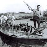 Jan de Goede, een van de vier loonploegers die in Sint Pancras werkzaam waren. De Veert, bezuiden de Kruissloot, jaren 50.
