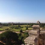 Aussicht über Bagan von einer der Pagoden