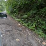 Strasse auf dem Weg zum Ijen-Krater