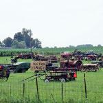 Vom Pferdewagen, Traktor bis zur Ambulanz kriegt man alles