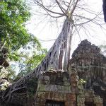 Im 'Tomb-Raider' Tempel