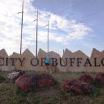 Endlich angekommen in Buffalo