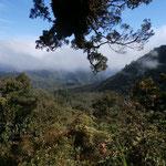 2-Tages-Wanderung auf den Mount Talinis (Cuernos de Negros)