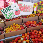 Kunterbunte Tomaten