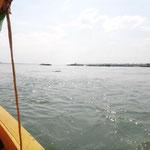 Irrawaddy-Flussdelfine im Mekong - man muss nur genau hinschauen