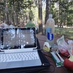 Zeit für Tageszusammenfassung - auch ohne WiFi