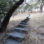 Kleiner Spaziergang