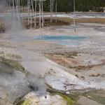 Norris Geysir Basin