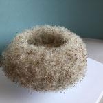 Löwenzahn-Samen, Höhe ca 15cm
