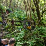 Am nächsten Morgen ging es mit Träger und Guide hinauf zum Vulkan. Das heisst 7 Stunden durch den Regenwald.