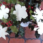 hibiscus,lys, fleur de vanille et orchidée