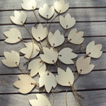 petites feuilles