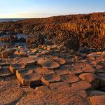 40.000 Basaltsäulen