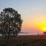 Sonnenaufgang mit Nebel im Juli