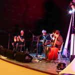 Le groupe The Travellers