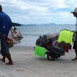 was so alles über den Strand gezottelt wird!?