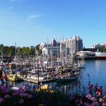 quirliger Hafen